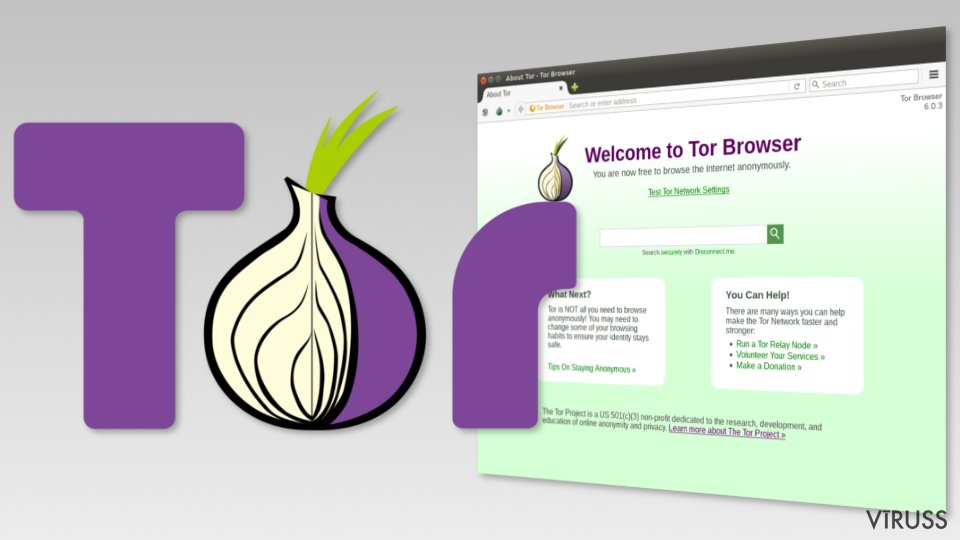 Image of Tor browser